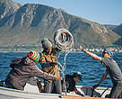 Baited Remote Underwater Videos are deployed to record marine life inside and outside of the Betty's Bay Marine Protected Area (MPA).