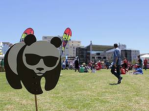 South Africa S Renewable Energy Festival 2015 Get Amped