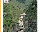 Mining and biodiversity