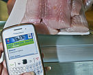 The WWF-SASSI mobi site is a convenient way to check the sustainability of your seafood.