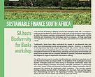 Sustainable Finance South Africa December 2013